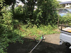 日野市現場 草刈り植木枝落とし作業前