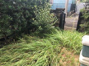 宮前区草刈り作業前
