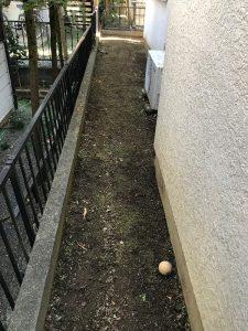 家周り草刈り完了
