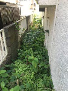 草刈り前横浜市金沢区現場